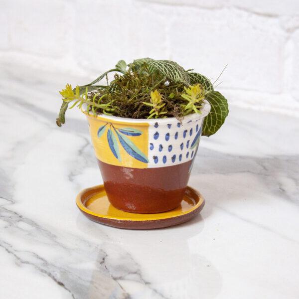 Мини-горшок под суккуленты и кактусы